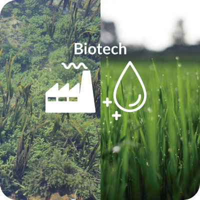 Biotratamientos & bioremediación