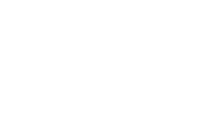 Clean Shester ®